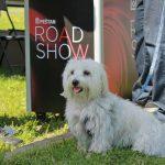 Road Show 27