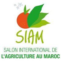 Siam Meknes, Morocco 17. 04 - 22. 04